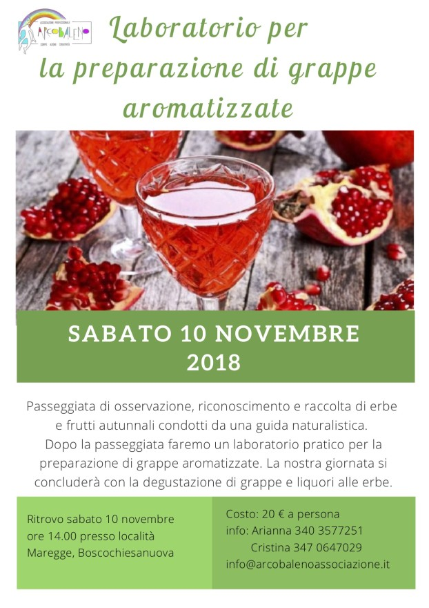 laboratorio grappe 10 novembre 2018